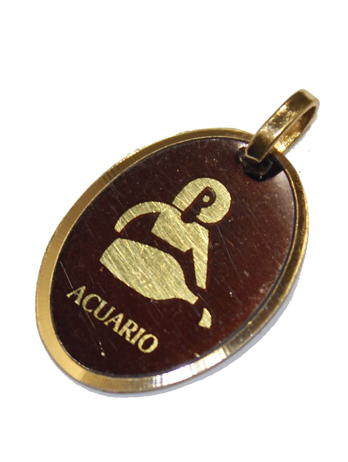 Amazon.com: Diamantados of Florida Aquarium Zodiac Medal - Acuario Pendant Medalla 18k Gold Plated Medal with 18 Inch Chain: Jewelry