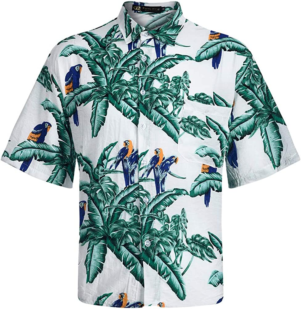 Camisa Polo con Punta - Camisa Polo para Hombre Manga Corta ...