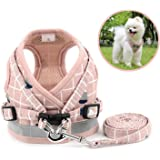 Zunea No Pull Small Dog Harness and Lead Set Adjustable Reflective Step-in Chihuahua Vest Harnesses Mesh Padded Plaid Escape Proof Puppy Jacket for Boy Girl Pet Dogs Cats Pink XS