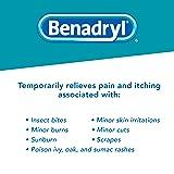 Benadryl Extra Strength Cooling Anti-Itch Spray 2