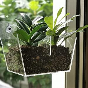 NIUXX Acrylic Window Planter Boxes, Creative Flower Pot Holder Plant Tray Shelf with Suction Cup, Great Outdoor Indoor Decorative Gift for Home (Medium Size with 2 Compartments)