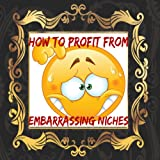 How to profit from embarrassing Niches [Online Code]