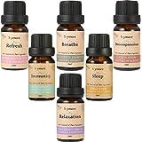Skymore Top Set di 6 Oli Essenziali Biologici, Set per il Sonno, Respirazione, Relax, Rinfrescante, Difese Immunitarie e Anti Stress, Olio Essenziale Per Aromaterapia, Ingredienti 100% Puri e Naturali