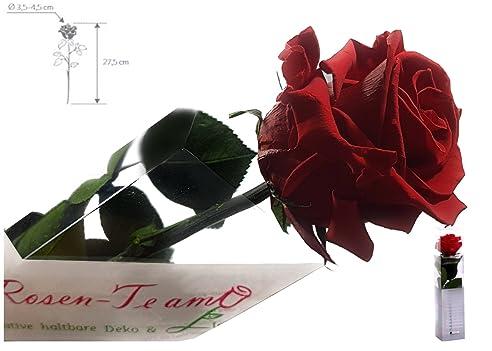 Rosen Te Amo Valentinstag Geschenk Rote Rose (Konservierte Rose)   Haltbare  Rose