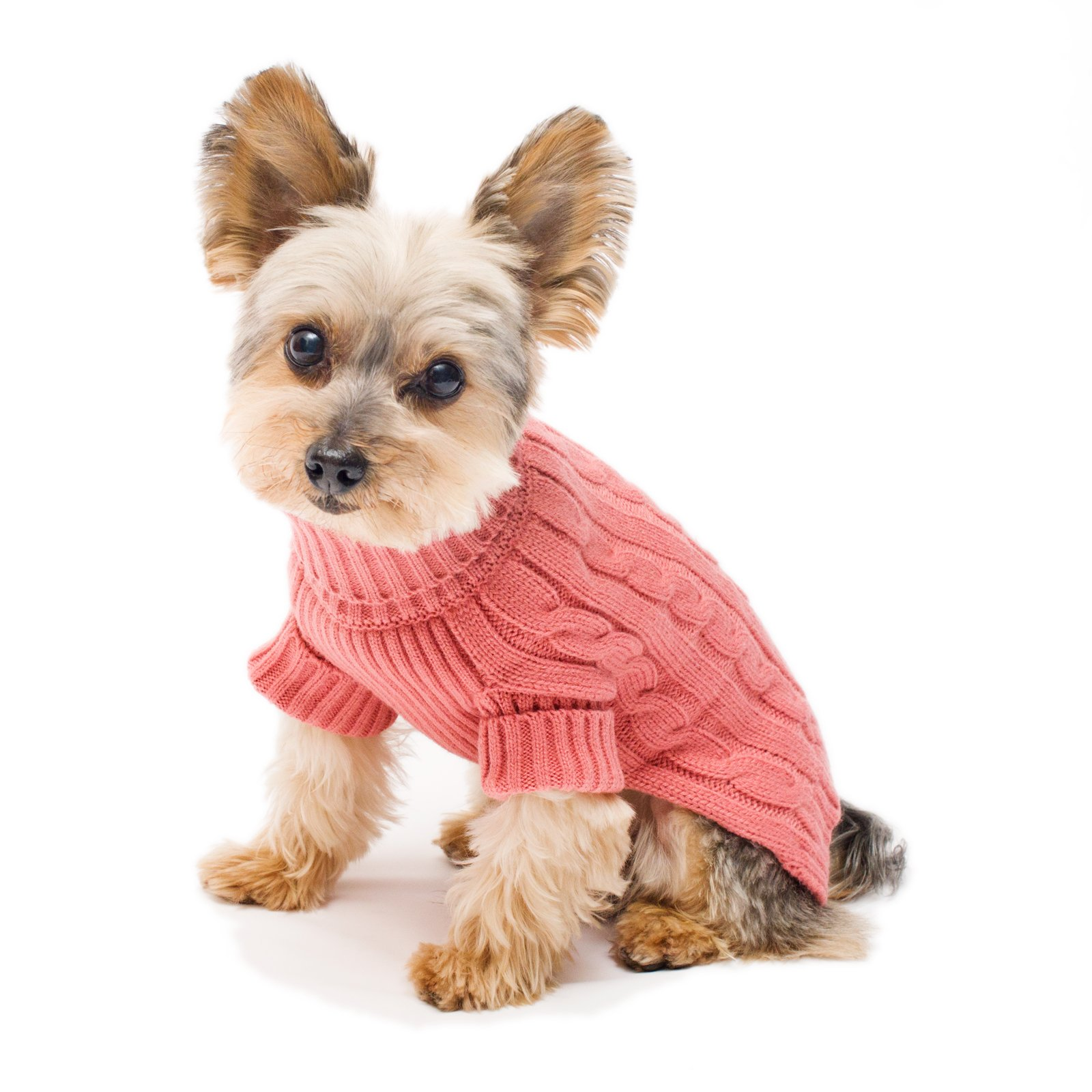 Best Rated In Dog Sweaters Helpful Customer Reviews Amazon Com