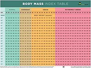 Nutrition Education Store BMI Poster - BMI Chart Poster - Body Mass Index Poster - 12
