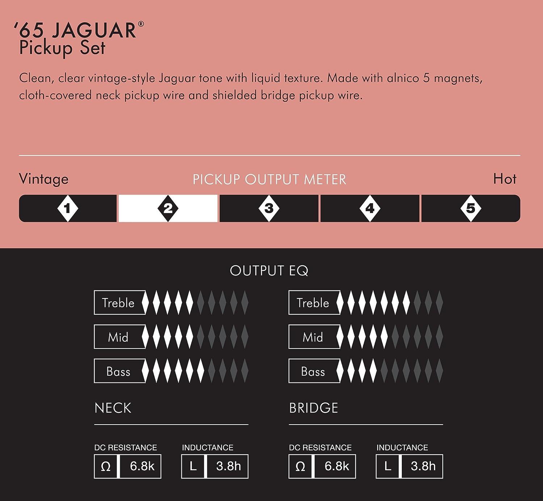 Amazon.com: Fender Pure Vintage '65 Jaguar Pickup Set: Musical InstrumentsAmazon.com