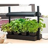 SunBlaster SL1600198 Micro Grow Light Garden, Black