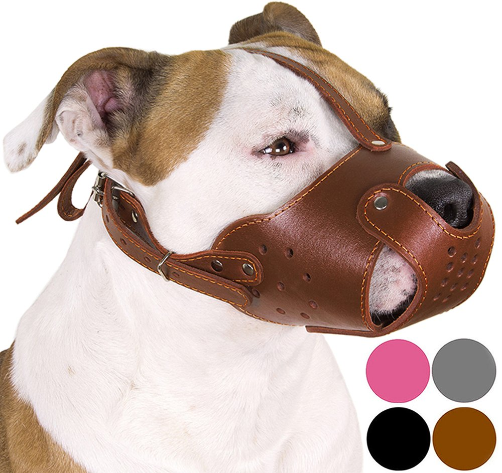 CollarDirect Dog Muzzle PitBull AmStaff Basket Genuine Leather Staffordshire Terrier (Chocolate Brown)