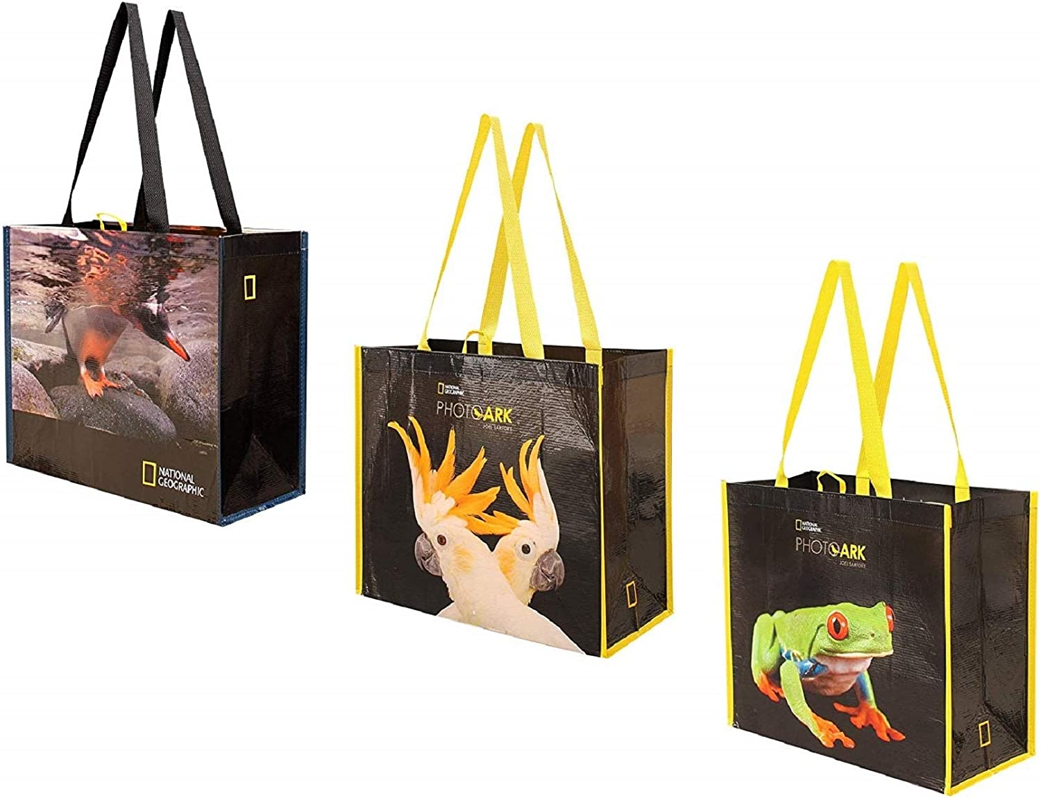 Reusable Grocery Bags Shopping Totes with National Geographic Prints Made from Extremely Durable Heavy Duty Laminated Rpet Water Resistant and Easy to Clean (Set of 3) (Frog/Parrots/Penguin)