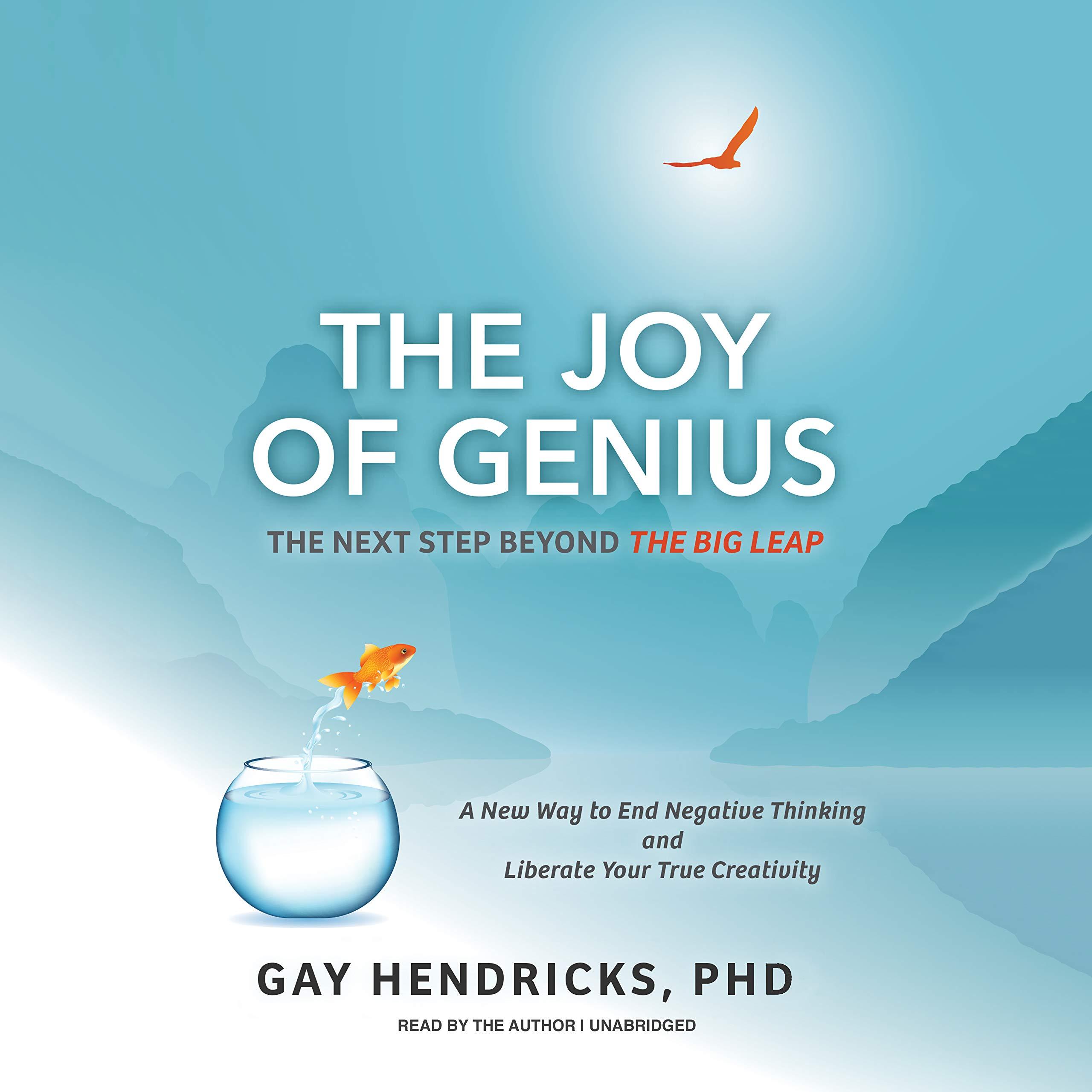 The Joy Of Genius Next Step Beyond Big Leap Amazon Hendricks Fremdsprachige Bucher