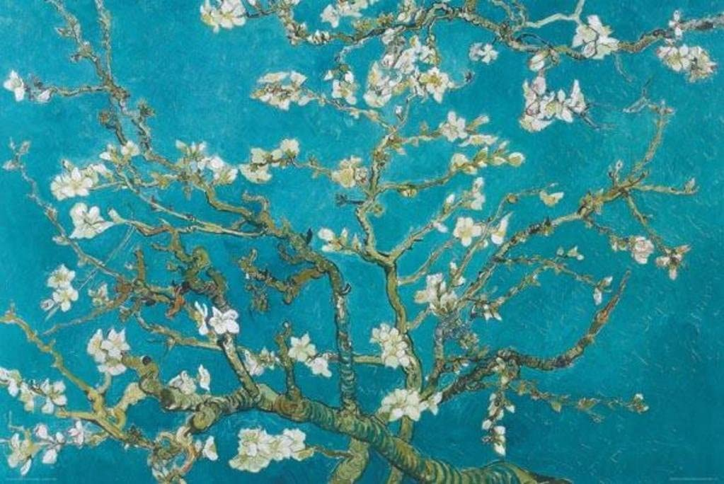 Pyramid America Vincent Van Gogh Almond Blossom Branches Cool Wall Decor Art Print Poster 36x24