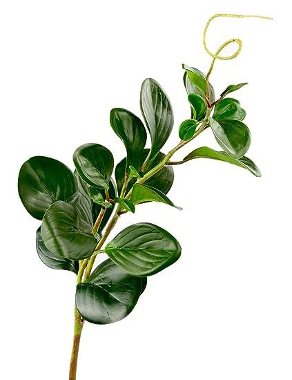 Amazon Com Rinlong Artificial Succulents Marble Jade Foliage Stems