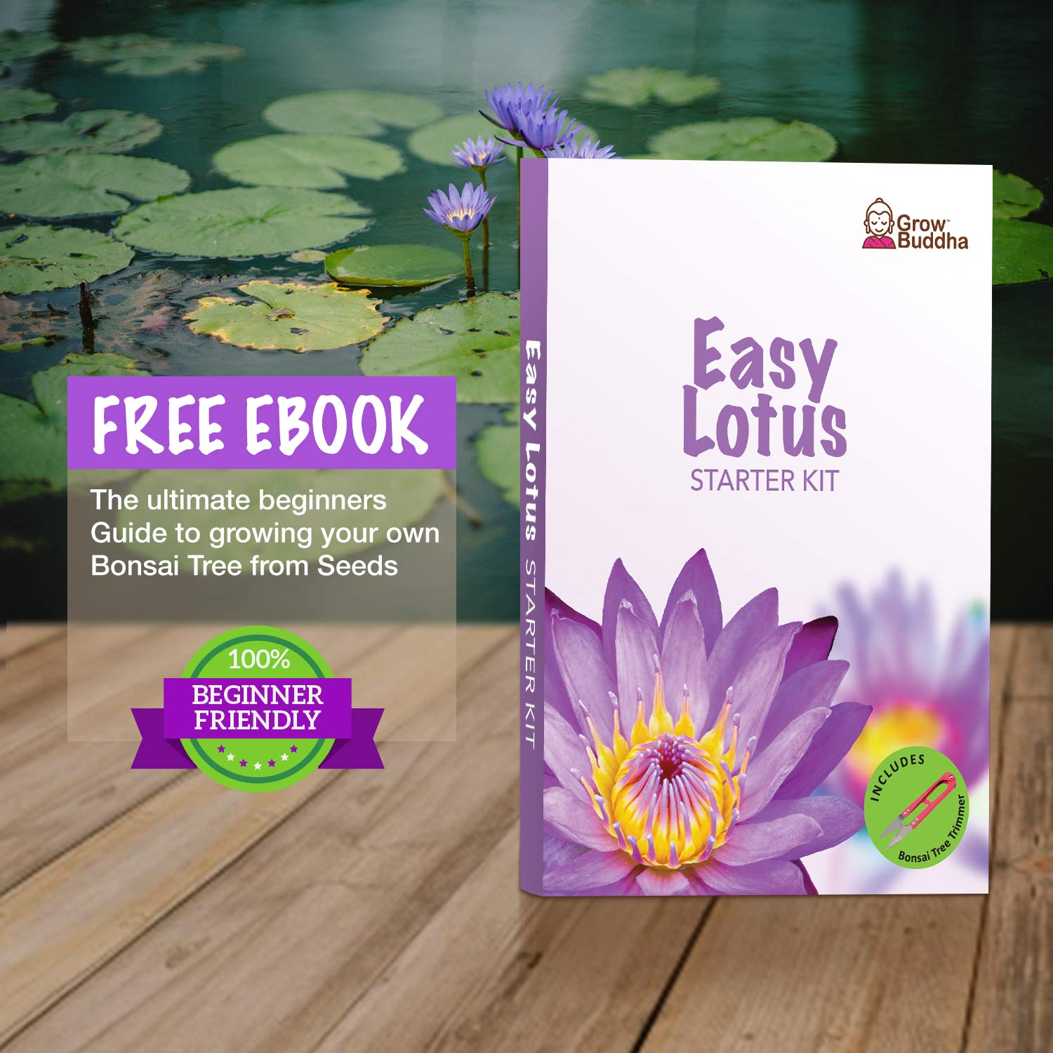 Grow Your Own Lotus Plant Kit Easily Grow Lotus Plant With Our