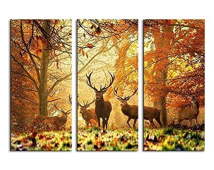 Amazon.com: Deer in Autumn Forest Canvas Prints Wall Art Decor ...