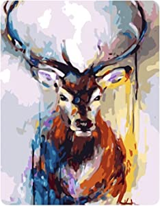 """Miitara DIY Paint by Numbers, Canvas Acrylic Painting for Adults and Kids, 16"""" x 20"""" Wall Art, Home Decoration, Colourful Deer Painting"""
