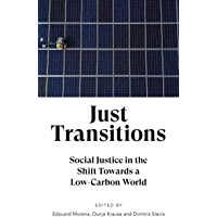 Just Transitions: Social Justice in the Shift Towards a Low-Carbon World