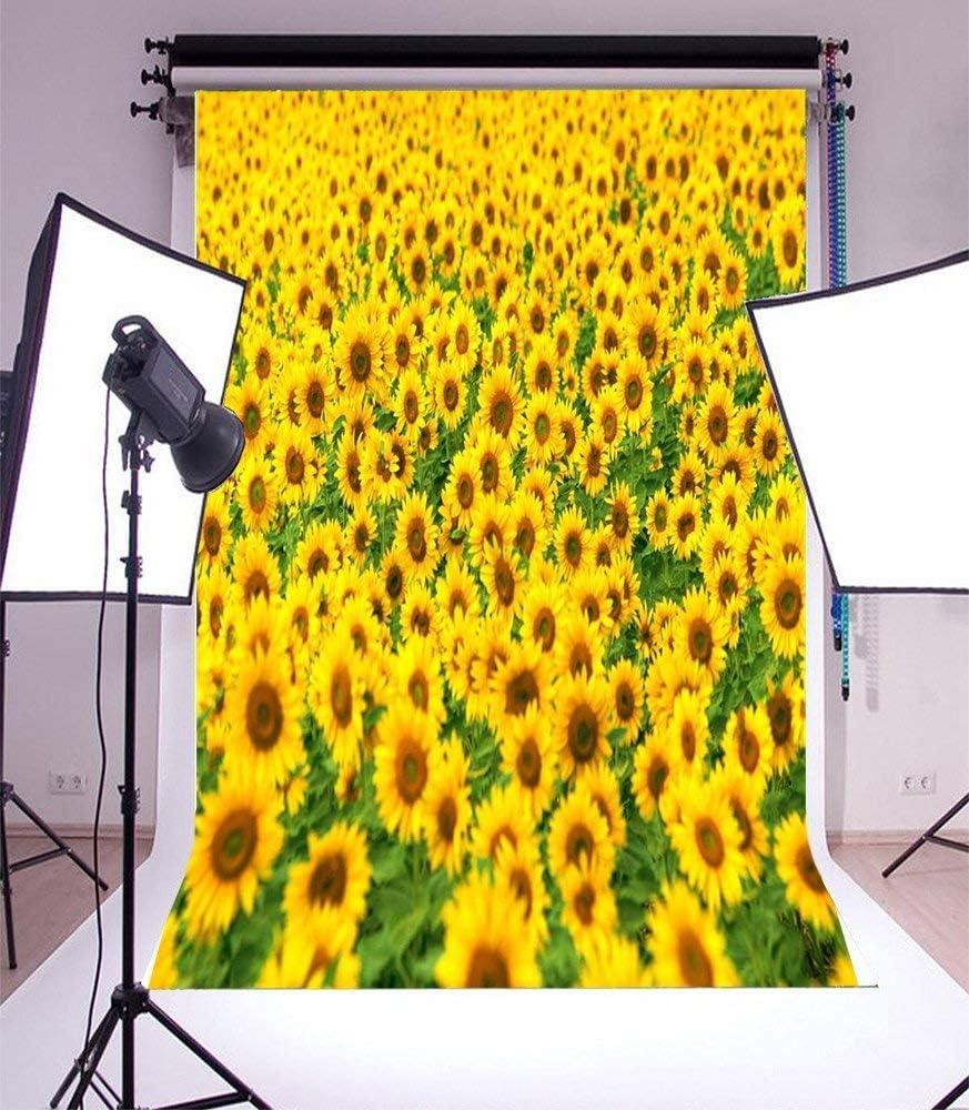 CdHBH 10x12ft Nature Theme Photography Background Sunflower Scene Landscape Photo Studio Children Birthday Photo Background Festival Venue Party Layout Vinyl Wallpaper Home Decoration