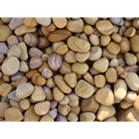 RM Unpolished Rainbow Pebbles (Multicolour, 10-50mm, 5Kg)