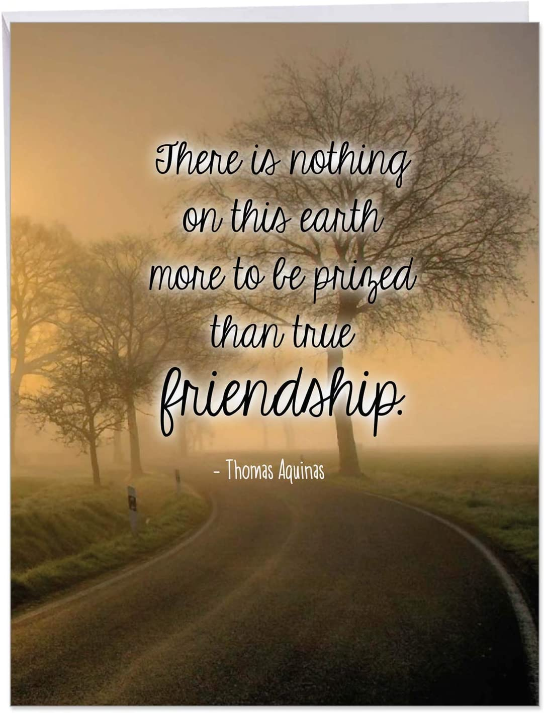 Friendly Words Friendship Birthday' Greeting Card with Envelope 8.5 x 11 Inch - True Friends Quote by Saint Thomas Aquinas - Nature Design Stationery Set for Personalized Happy Bday Gift J6618GBDG