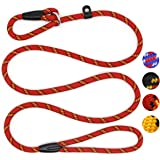Extremely Durable Dog Training Leash Rope, Adjustable Pet Slip Lead for Small Medium Dogs (10-80 lbs)