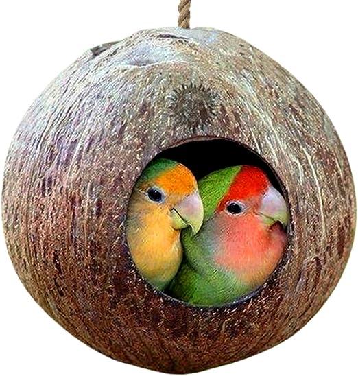 Casa de pájaros de Concha de Coco Natural - Casa de pájaros para Jaula o Exterior - Finch,