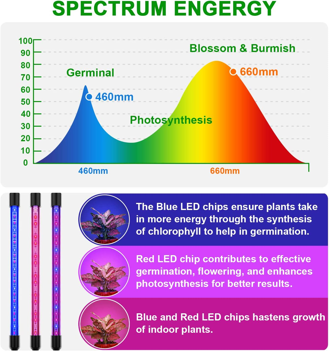 EZORKAS Grow Light, 80W Tri Head Timing 80 LED 9 Dimmable Levels Plant Grow Lights for Indoor Plants with Red Blue Spectrum, Adjustable Gooseneck, 3 9 12H Timer, 3 Switch Modes: Home Improvement