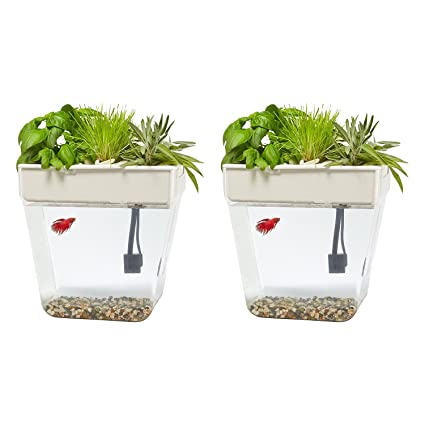Back To The Roots Water Garden 3 Gallon Self Cleaning Fish Tank Brand New Fish & Aquariums