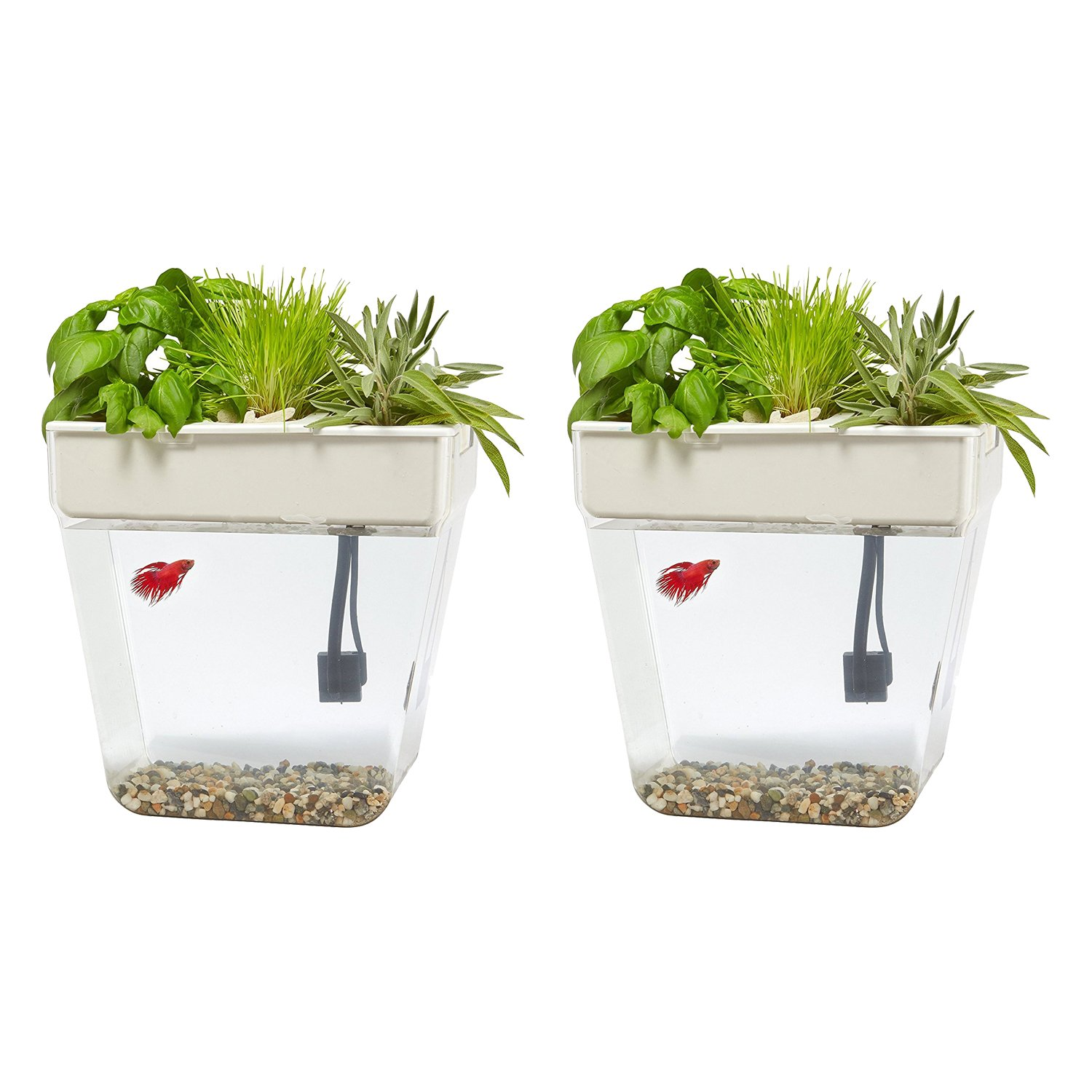 Back to the Roots 3 Gal. Self-Cleaning Aquaponic Water Garden Fish Tank, 2 Pack