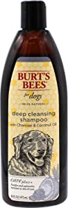 Burt's Bees Care Plus+ Deep Cleansing Charcoal & Coconut Oil Shampoo for Dogs | Purifies & Replenishes | 16 oz