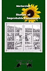 Stories of Improbable Encounters Paperback