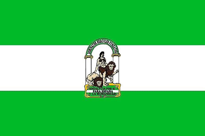 BPH AN150R Bandera de Andalucía, Raso, 100 x 150 cm: Amazon.es: Jardín