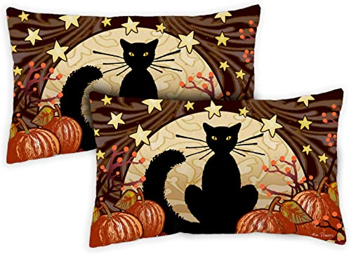 Toland Home Garden 731247 Moonlight Cat 12 x 19 inch Indoor Outdoor, Pillow with Insert 2-Pack