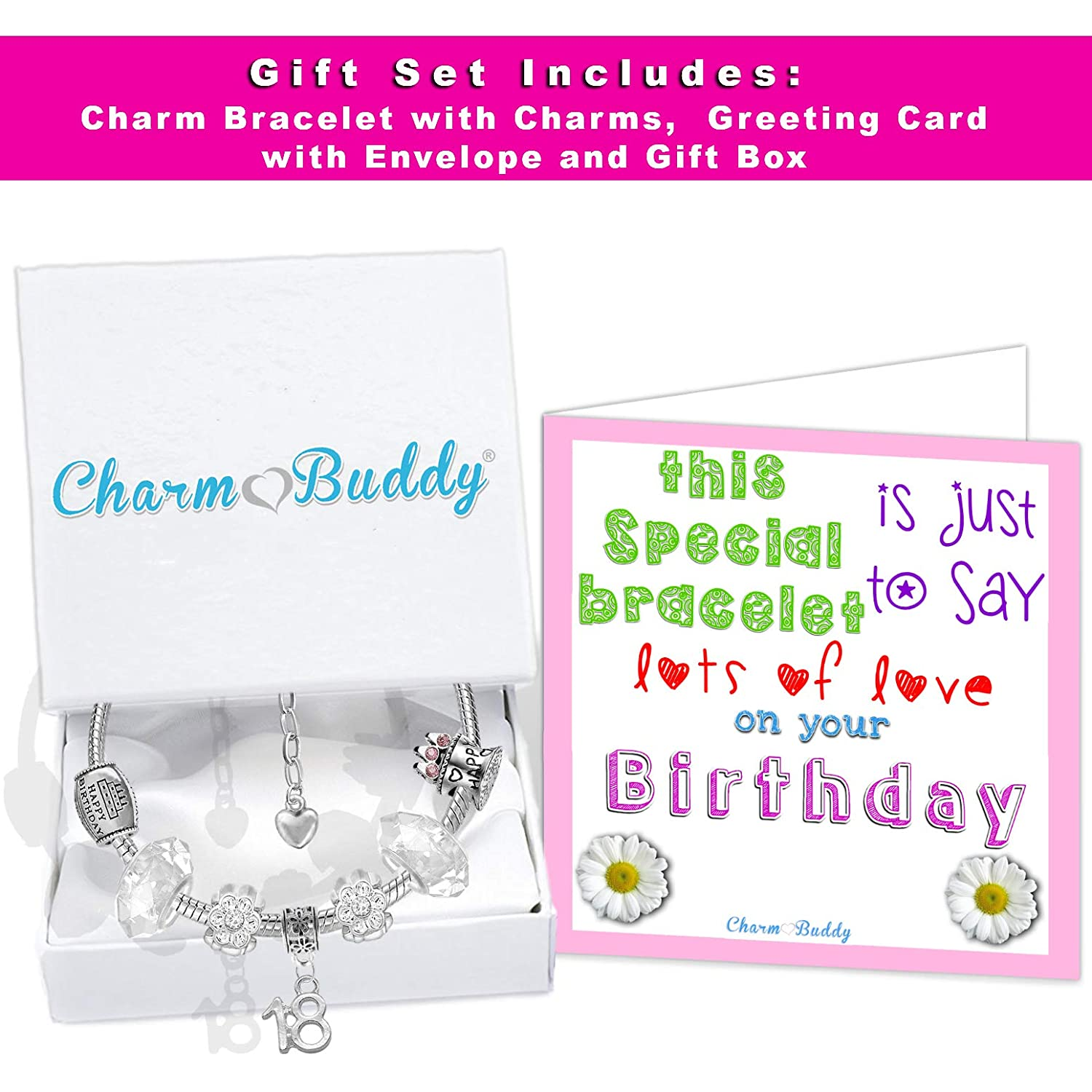 Charm Buddy 18th Birthday Good Luck Lucky Iced Silver Pandora Style Bracelet With Charms Gift Box
