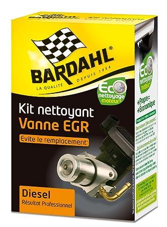 BARDAHL Bardhal - 2009123 - Kit limpiador de válvula EGR.: Amazon.es: Coche y moto