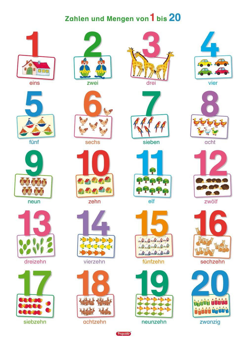 Fragenbär Lernposter Zahlen und Mengen von 20 bis 20 in der ...