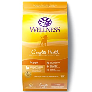 7. Wellness Complete Health Natural Dry Puppy Food (Chicken, Salmon & Oatmeal)