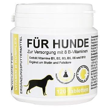 vicupets® Vitamina B complejo para perros | 8 B de vitaminas ...