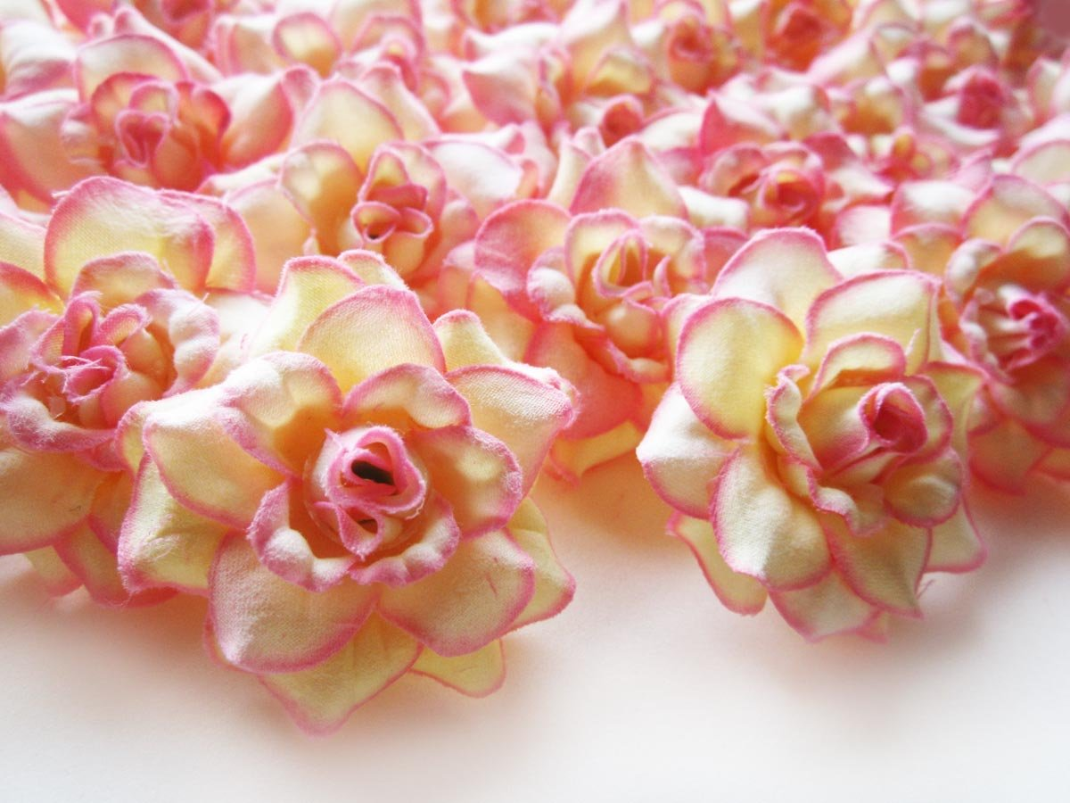 100-Silk-Cream-Pink-Edge-Roses-Flower-Head-175-Artificial-Flowers-Heads-Fabric-Floral-Supplies-Wholesale-Lot-for-Wedding-Flowers-Accessories-Make-Bridal-Hair-Clips-Headbands-Dress