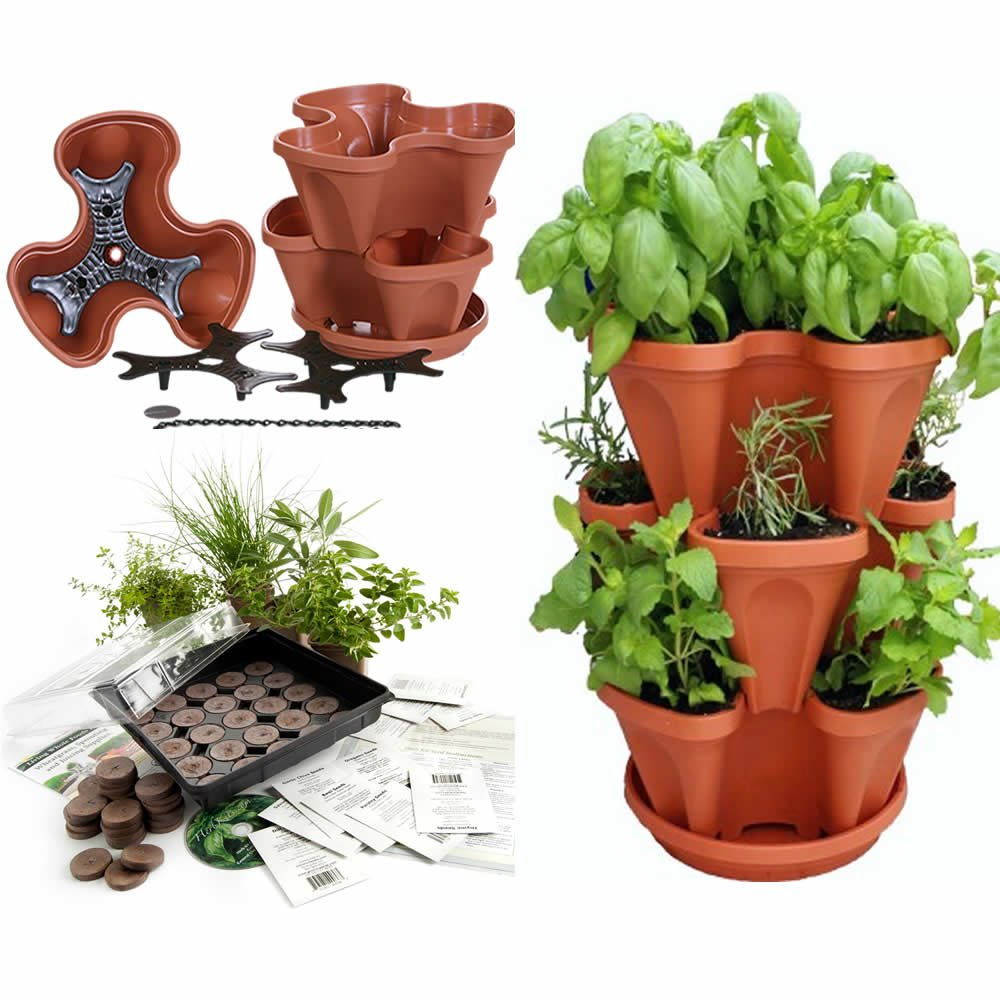 Amazon.com : Stackable Planter + Medicinal Herb Garden Starter Kit  Start  Growing Fresh Medicine Herbs   Seeds: Burdock, Echinacea, Fever Few, ...