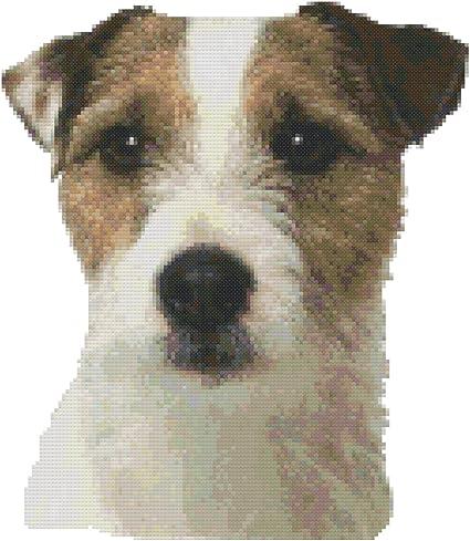 Amigurumi - Jack Russell Terrier Puppy free pattern | Crochet dog ... | 491x425