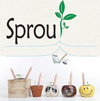 Honel Sprout Bleistift Krauter Pack Fancyus Plantable Bleistift Mit