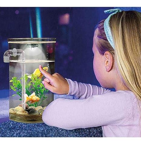 Wonder Fish Pecera Acuario autolimpiable