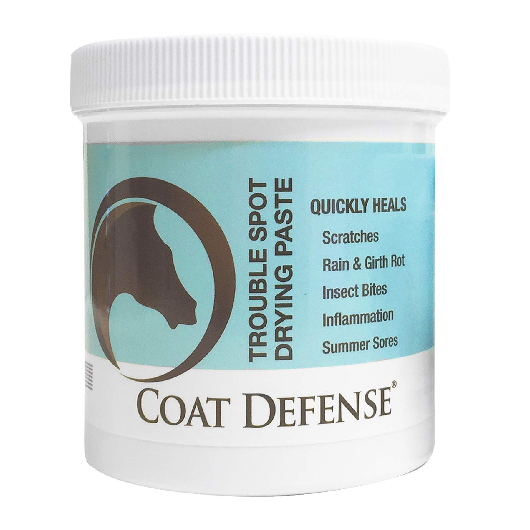 Coat Defense Drying Paste for Horses. Treat Summer Sores, Sweet Itch, Mud Fever, Scratches, Rain Rot, Girth Rot, Proud Flesh, Insect Bites. Protects, Dries, Soothes. Safe. Talc-Free. 24 Ounce Jar.