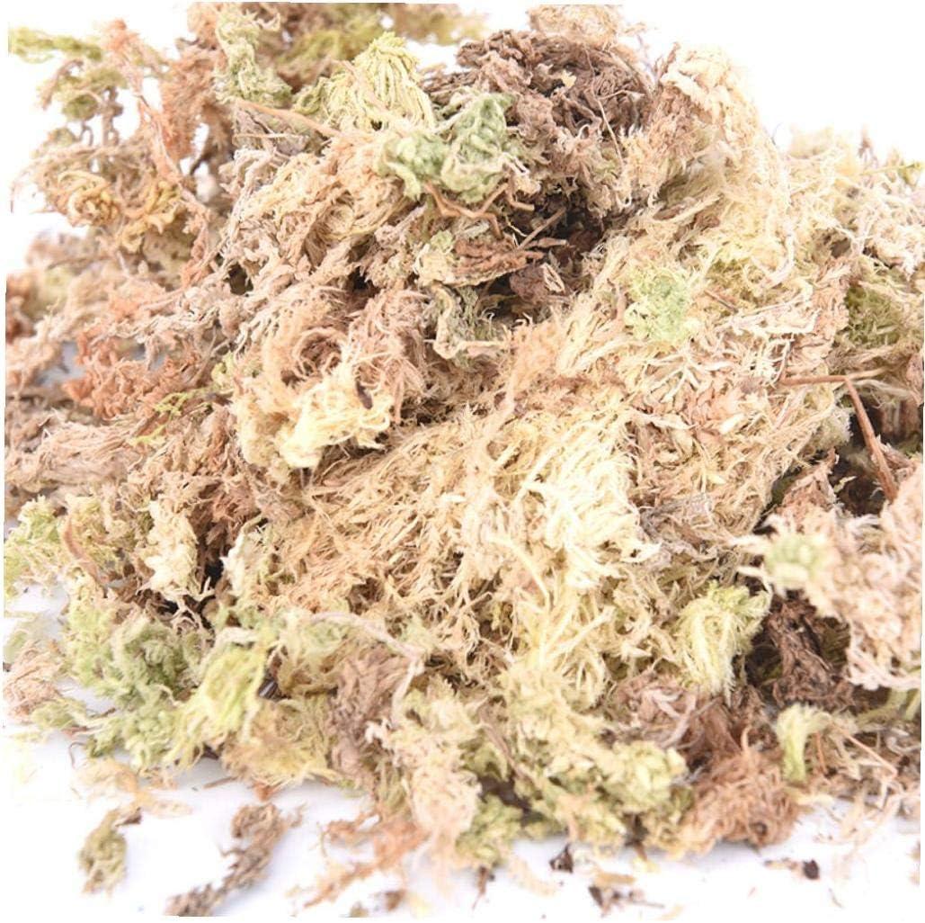 1pack 12l Sphagnum seco Musgo Jard/ín Hidrataci/ón Nutrici/ón Fertilizante org/ánico para orqu/ídea Phalaenopsis Musgo Sphagnum Muebles de jard/ín