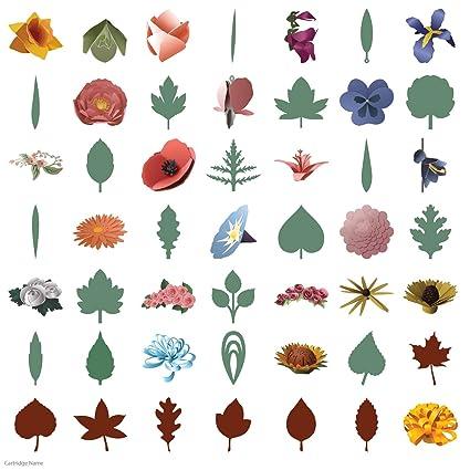Image Unavailable Not Available For Color Cricut 3D Floral Home Decor Cartridge