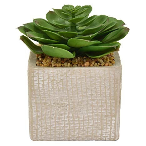 Amazon Com Three Hands 6 Faux Succulent Pot In Green Home Kitchen