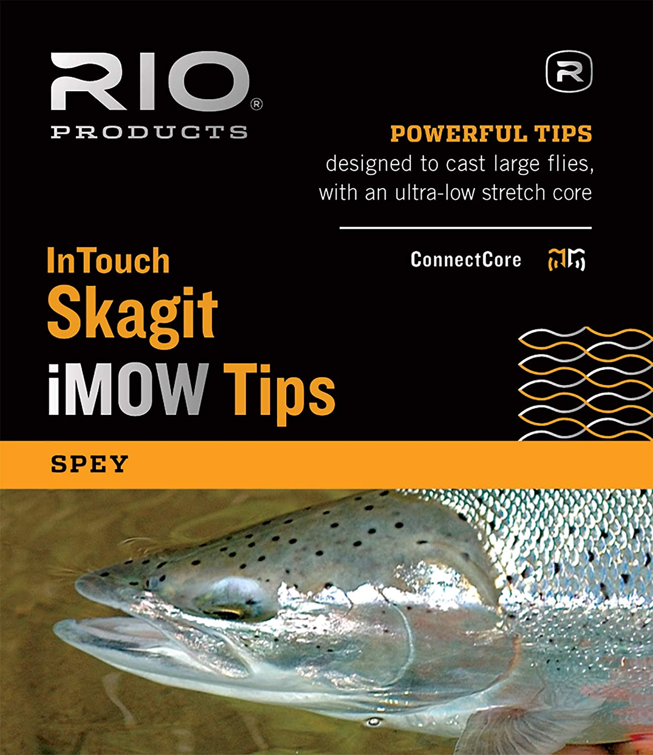 RIO Products InTouch Skagit iMOW Medium Tip