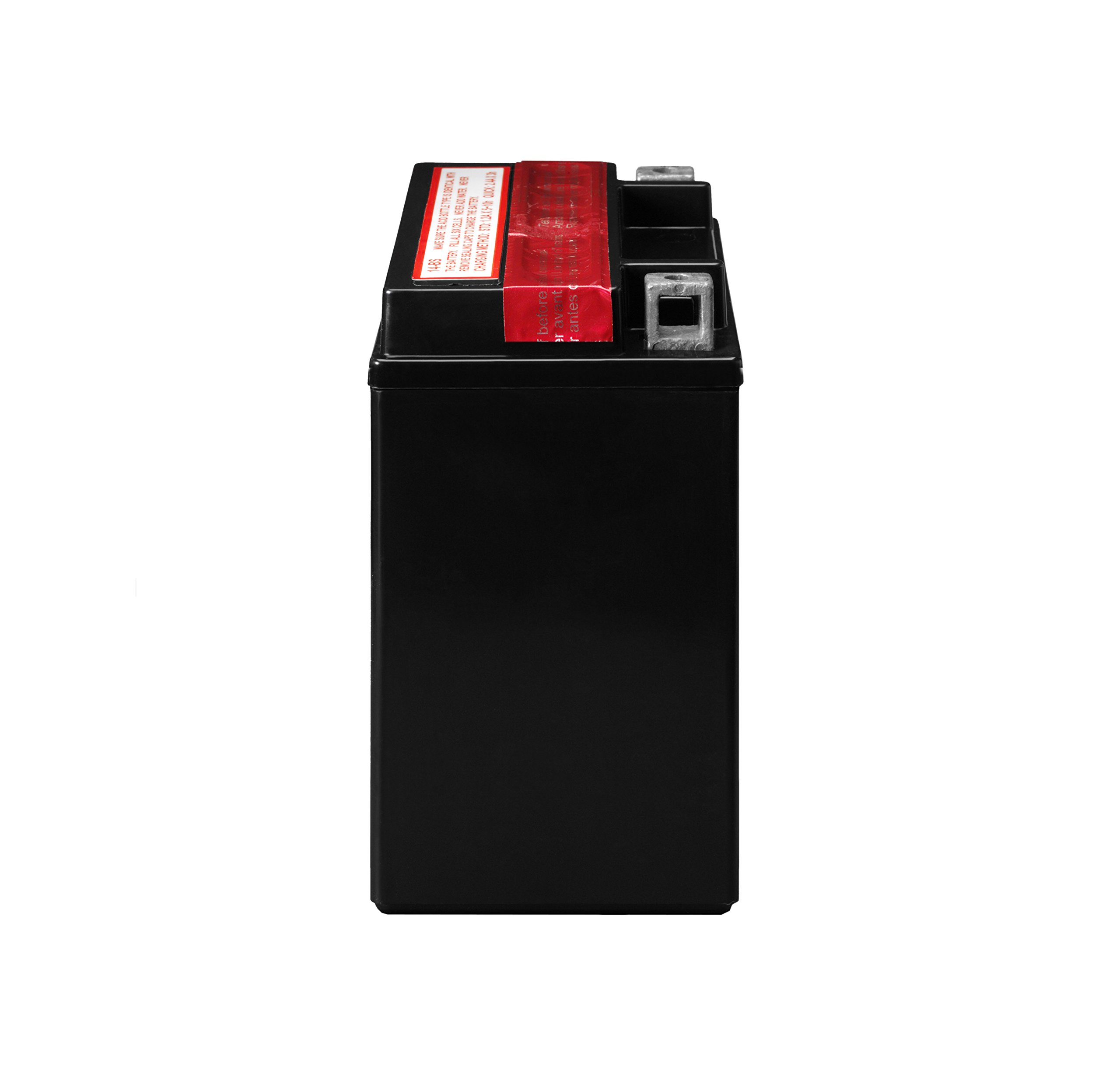 ACDelco ATX14BS Specialty AGM Powersports JIS 14-BS Battery by ACDelco (Image #3)