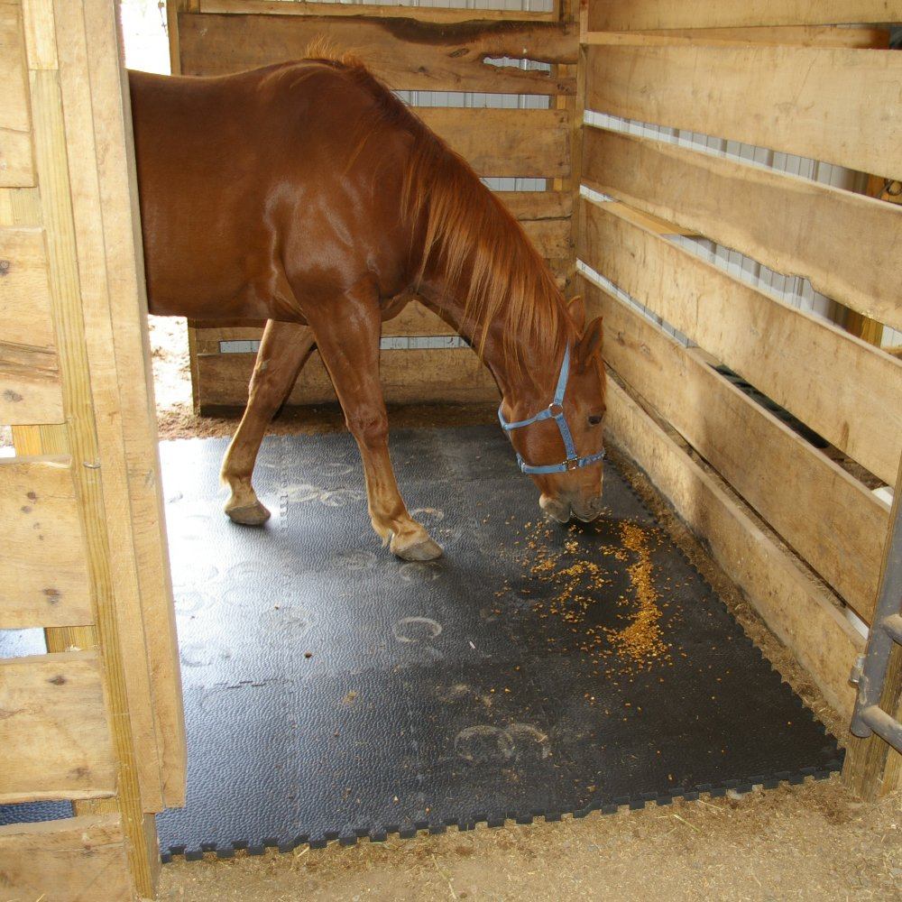 Greatmats Portable Interlocking Pebble Top Horse Stall Mats 15 Pack by Greatmats.com (Image #6)